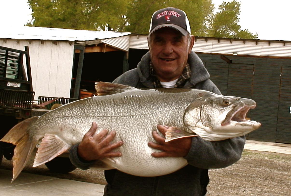Colorado s top springtime fishing destinations colorado for Salmon fishing colorado