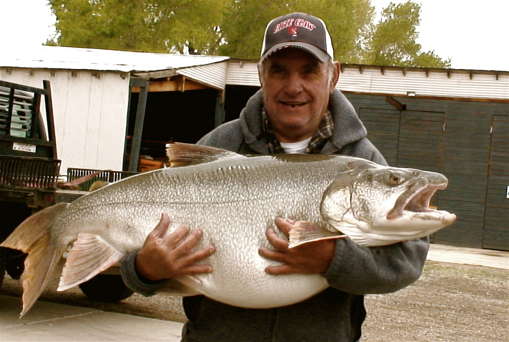 Colorado's state-record Mackinaw caught at Blue Mesa in 2011
