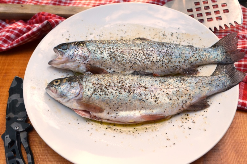 Rainbow trout ready for the grill. All photos by Wayne D. Lewis/CPW.