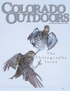 Photo Issue 2015 cover