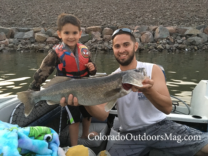 kid walleye photo